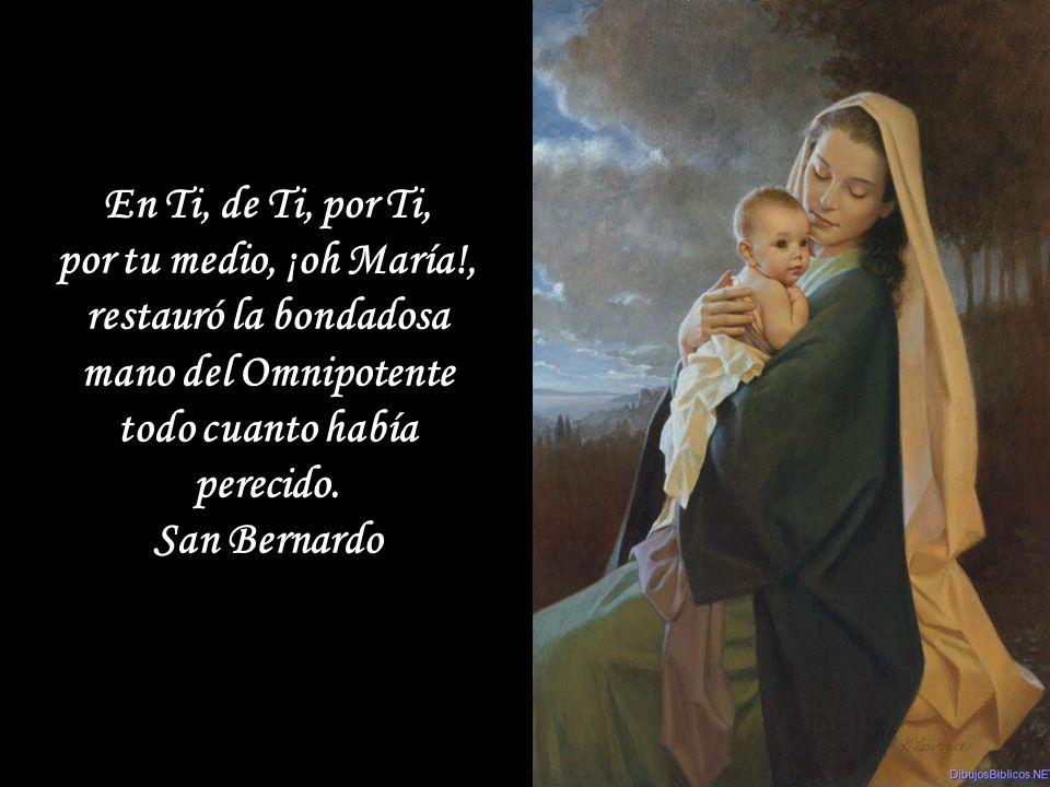 En la Sagrada Escritura encontramos pocas palabras de la Virgen, pero son como granos de oro puro: si los fundimos con el fuego de una amorosa contemplación, serán suficientes para irradiar sobre toda nuestra vida el esplendor luminoso de las virtudes de María.
