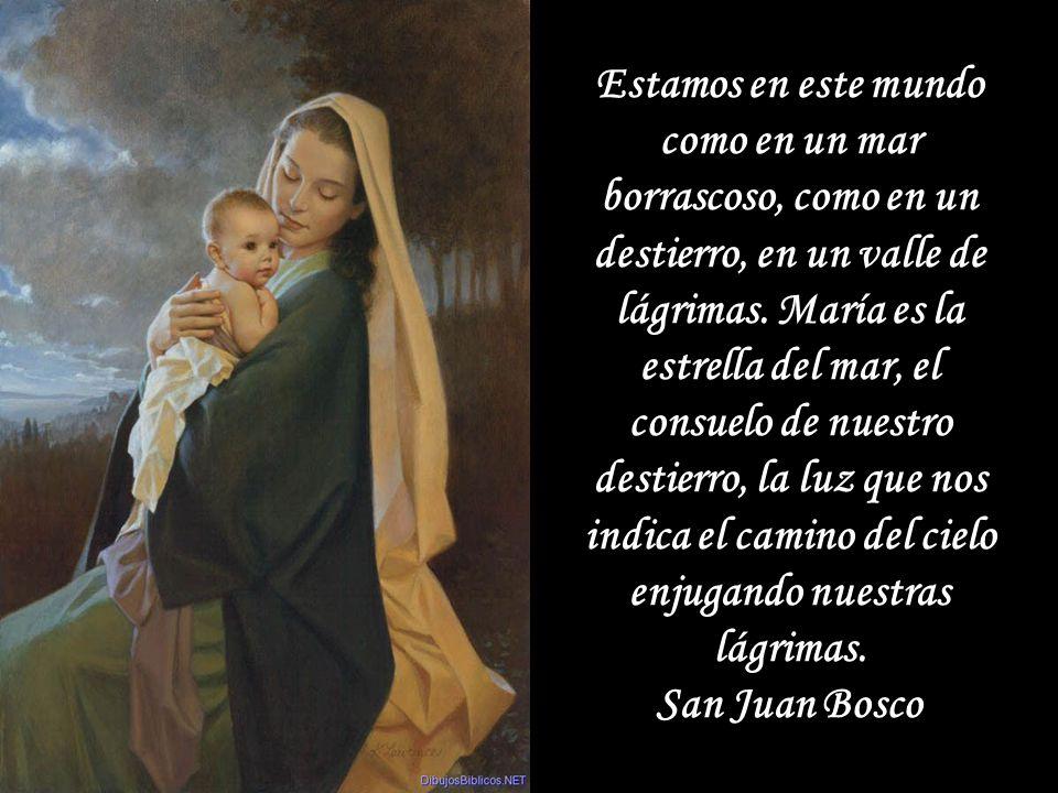 Es casi imposible ir hacia Jesús si no se va por medio de María. San Juan Bosco Es casi imposible ir hacia Jesús si no se va por medio de María. San J