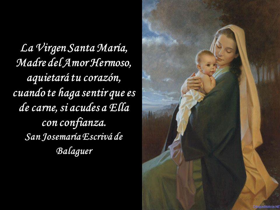 La Virgen guardaba estas cosas en su corazón. Toda su vida se puede resumir en estas pocas palabras. Vivía en su corazón, a tal profundidad, que la mi