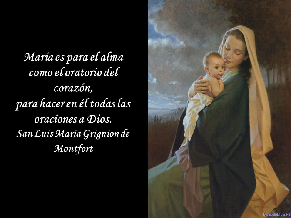 La Virgen Santa María, Madre del Amor Hermoso, aquietará tu corazón, cuando te haga sentir que es de carne, si acudes a Ella con confianza.