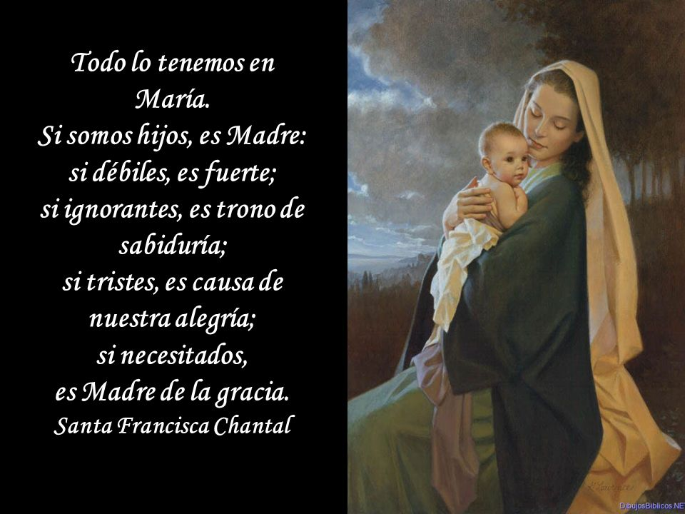 Si ustedes desean asistir a la Sagrada Misa con devoción y obtener frutos, piensen en la Madre Dolorosa al pie del Calvario. San Pío de Pieltrecina Si