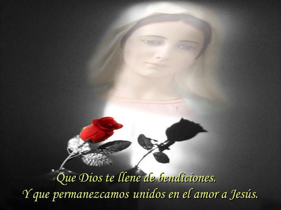 La familia nunca es tan familia como el día de la Madre; la Iglesia nunca es tan Iglesia como el día de la Madre, de la Madre de Cristo y Madre nuestra también...