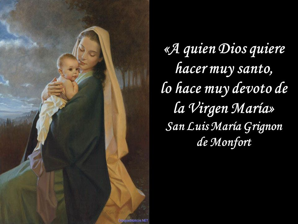 Contemplando a su buena Madre, el enamorado san Bernardo le dice con ternura: ¡Oh excelsa, oh piadosa, oh digna de toda alabanza Santísima Virgen Maria, tu nombre es tan dulce y amable que no se puede nombrar sin que el que lo nombra no se inflame de amor a ti y a Dios; y sólo con pensar en él, los que te aman se sienten más consolados y más inflamados en ansias de amarte! Glorias de María, San Alfonso María de Ligorio Contemplando a su buena Madre, el enamorado san Bernardo le dice con ternura: ¡Oh excelsa, oh piadosa, oh digna de toda alabanza Santísima Virgen Maria, tu nombre es tan dulce y amable que no se puede nombrar sin que el que lo nombra no se inflame de amor a ti y a Dios; y sólo con pensar en él, los que te aman se sienten más consolados y más inflamados en ansias de amarte! Glorias de María, San Alfonso María de Ligorio