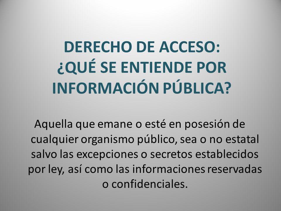 DERECHO DE ACCESO: ¿QUÉ SE ENTIENDE POR INFORMACIÓN PÚBLICA? Aquella que emane o esté en posesión de cualquier organismo público, sea o no estatal sal