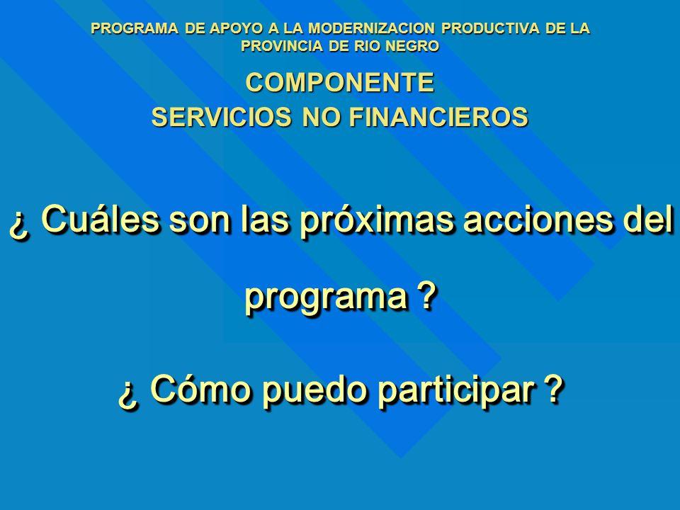¿ Cuáles son las próximas acciones del programa ? ¿ Cómo puedo participar ? PROGRAMA DE APOYO A LA MODERNIZACION PRODUCTIVA DE LA PROVINCIA DE RIO NEG
