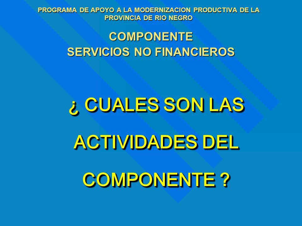 PROGRAMA DE APOYO A LA MODERNIZACION PRODUCTIVA DE LA PROVINCIA DE RIO NEGRO COMPONENTE SERVICIOS NO FINANCIEROS DIFUSION Y SENSIBILIZACION CAPACITACION PLANES DE NEGOCIOS SEGUIMIENTO