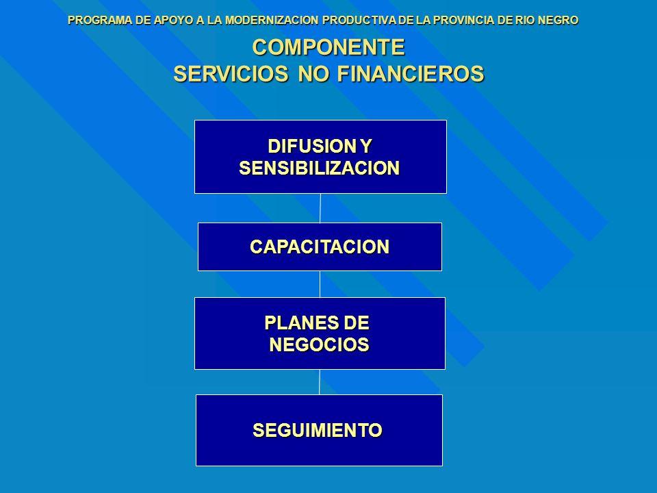 PROGRAMA DE APOYO A LA MODERNIZACION PRODUCTIVA DE LA PROVINCIA DE RIO NEGRO COMPONENTE SERVICIOS NO FINANCIEROS DIFUSION Y SENSIBILIZACION CAPACITACI