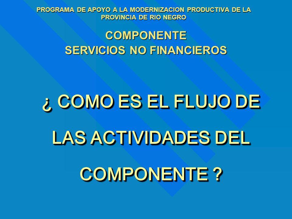 PROGRAMA DE APOYO A LA MODERNIZACION PRODUCTIVA DE LA PROVINCIA DE RIO NEGRO COMPONENTE SERVICIOS NO FINANCIEROS ¿ COMO ES EL FLUJO DE LAS ACTIVIDADES