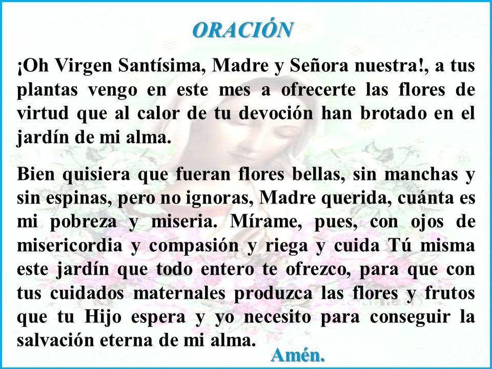 FLOR ESPIRITUAL: Consagrarse a la Santísima Virgen y prometerle no apartarnos jamás de Ella por el pecado.