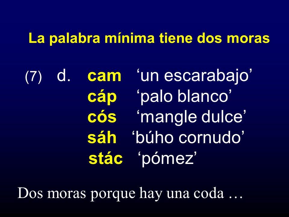 (7) d. cam un escarabajo cáp palo blanco cós mangle dulce sáh búho cornudo stác pómez La palabra mínima tiene dos moras Dos moras porque hay una coda