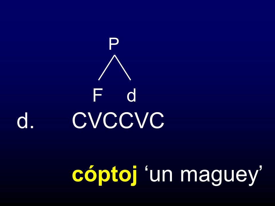 d.CVCCVC cóptoj un maguey P Fd