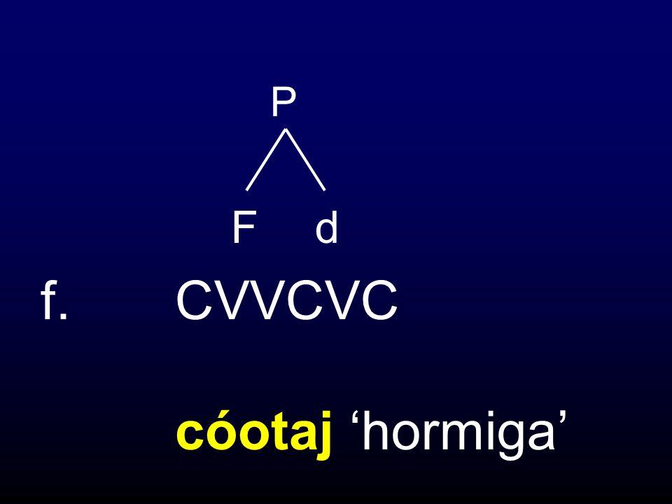 f.CVVCVC cóotaj hormiga P Fd