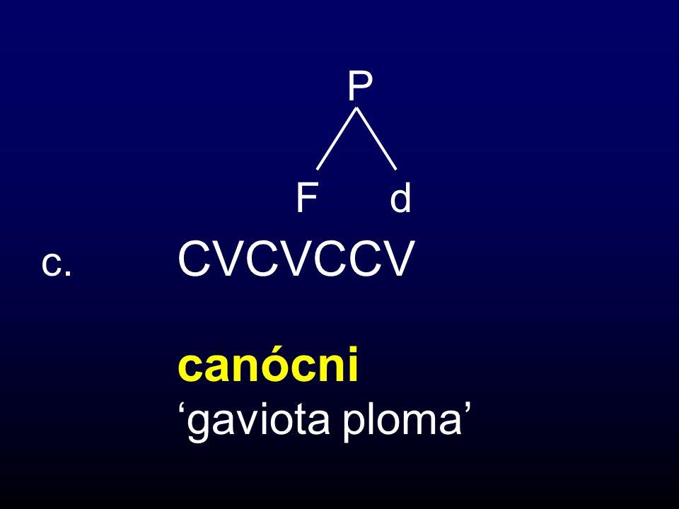 F d c. CVCVCCV canócni gaviota ploma P