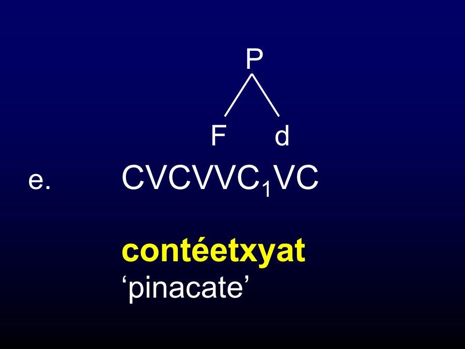 F d e. CVCVVC 1 VC contéetxyat pinacate P