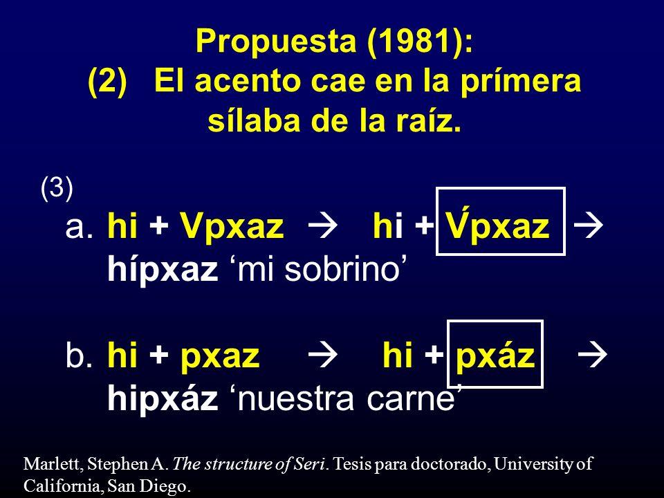 Propuesta (1981): (2)El acento cae en la prímera sílaba de la raíz. (3) a.hi + Vpxaz hi + V́pxaz hípxaz mi sobrino b.hi + pxaz hi + pxáz hipxáz nuestr