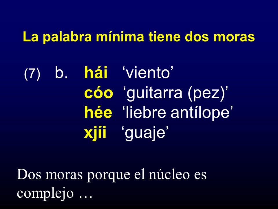 (7) b. hái viento cóo guitarra (pez) hée liebre antílope xjíi guaje La palabra mínima tiene dos moras Dos moras porque el núcleo es complejo …