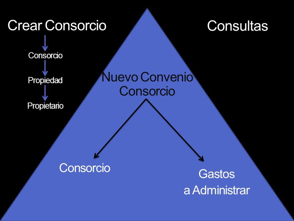 Crear Consorcio Consultas Propiedad Propietario Nuevo Convenio Consorcio Consorcio Gastos a Administrar