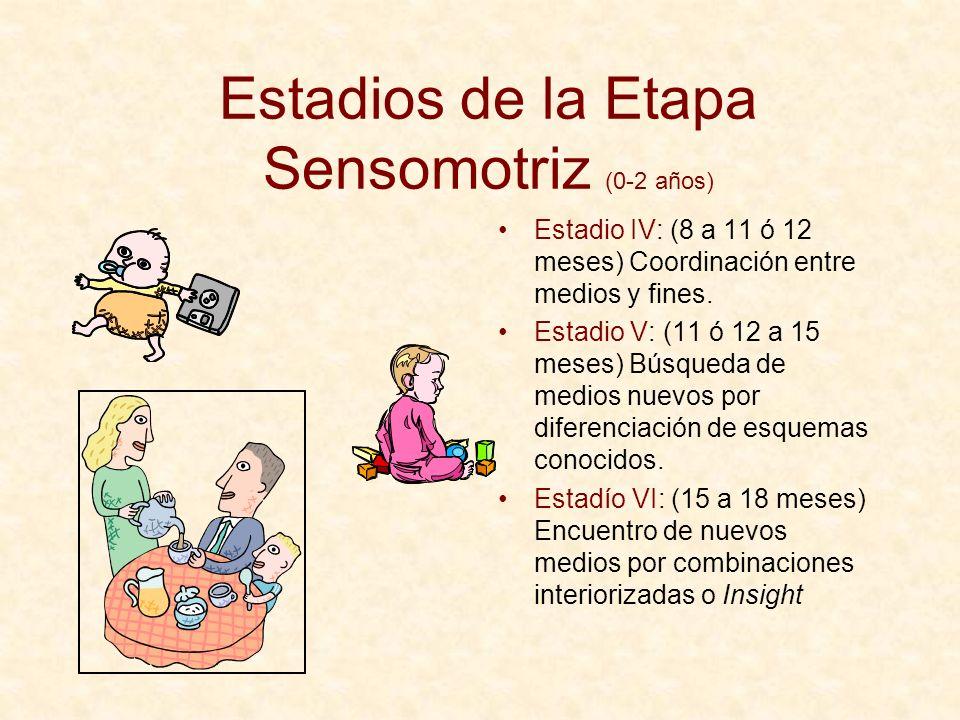 Estadios de la Etapa Sensomotriz (0-2 años) Estadio IV: (8 a 11 ó 12 meses) Coordinación entre medios y fines. Estadio V: (11 ó 12 a 15 meses) Búsqued