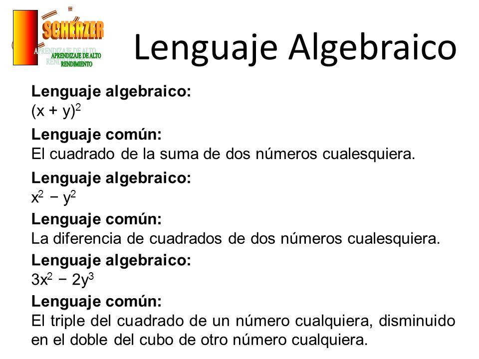 Lenguaje Algebraico Lenguaje algebraico: (x + y) 2 Lenguaje común: El cuadrado de la suma de dos números cualesquiera. Lenguaje algebraico: x 2 y 2 Le