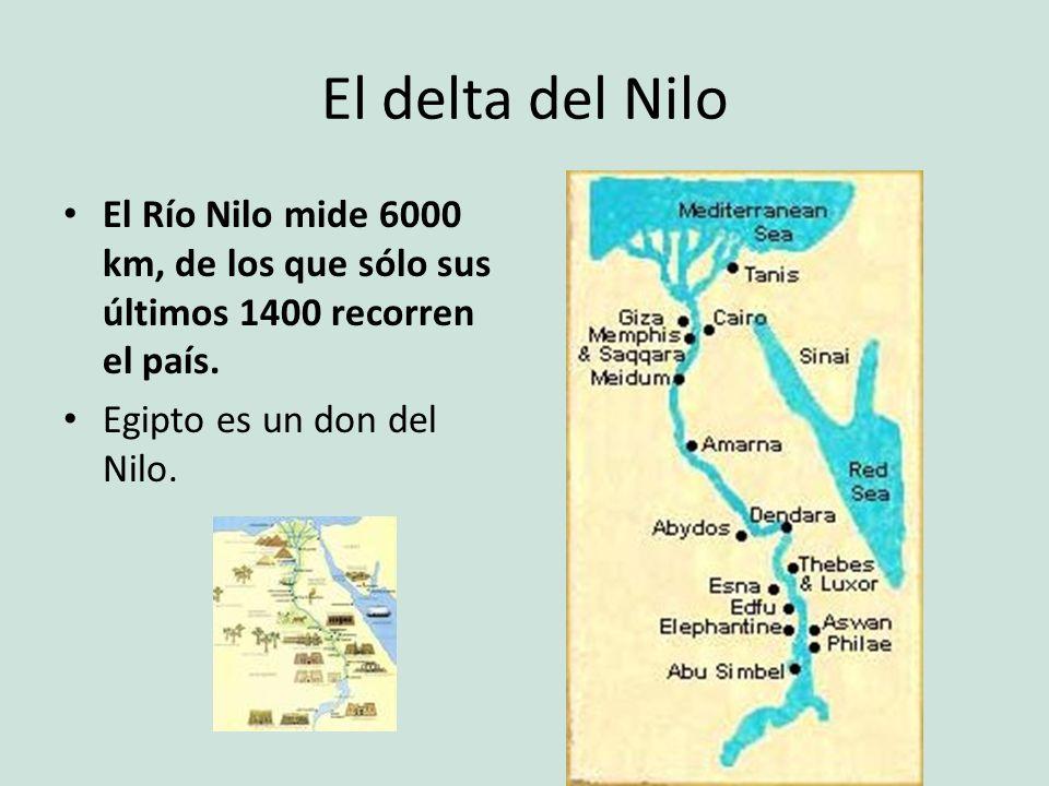 El delta del Nilo El Río Nilo mide 6000 km, de los que sólo sus últimos 1400 recorren el país. Egipto es un don del Nilo.