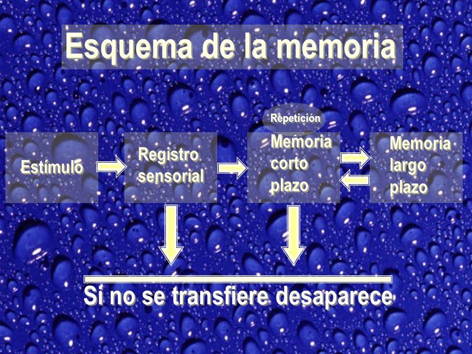 MECANISMOS DE PERDIDA DE MEMORIA Olvido Olvido benigno Mecanismo del olvido Olvido Olvido benigno Mecanismo del olvido