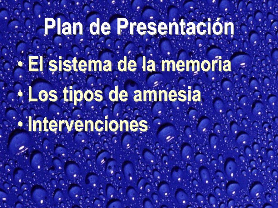 Plan de Presentación El sistema de la memoria Los tipos de amnesia Intervenciones El sistema de la memoria Los tipos de amnesia Intervenciones