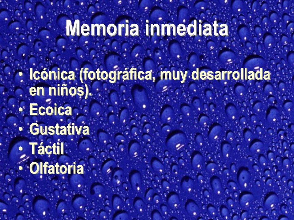 Icónica (fotográfica, muy desarrollada en niños).