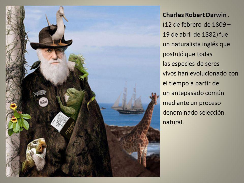 Charles Robert Darwin. (12 de febrero de 1809 – 19 de abril de 1882) fue un naturalista inglés que postuló que todas las especies de seres vivos han e