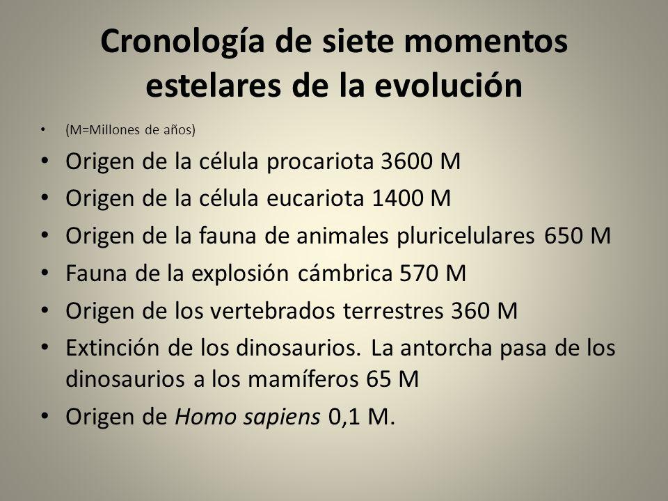 Cronología de siete momentos estelares de la evolución (M=Millones de años) Origen de la célula procariota 3600 M Origen de la célula eucariota 1400 M Origen de la fauna de animales pluricelulares 650 M Fauna de la explosión cámbrica 570 M Origen de los vertebrados terrestres 360 M Extinción de los dinosaurios.