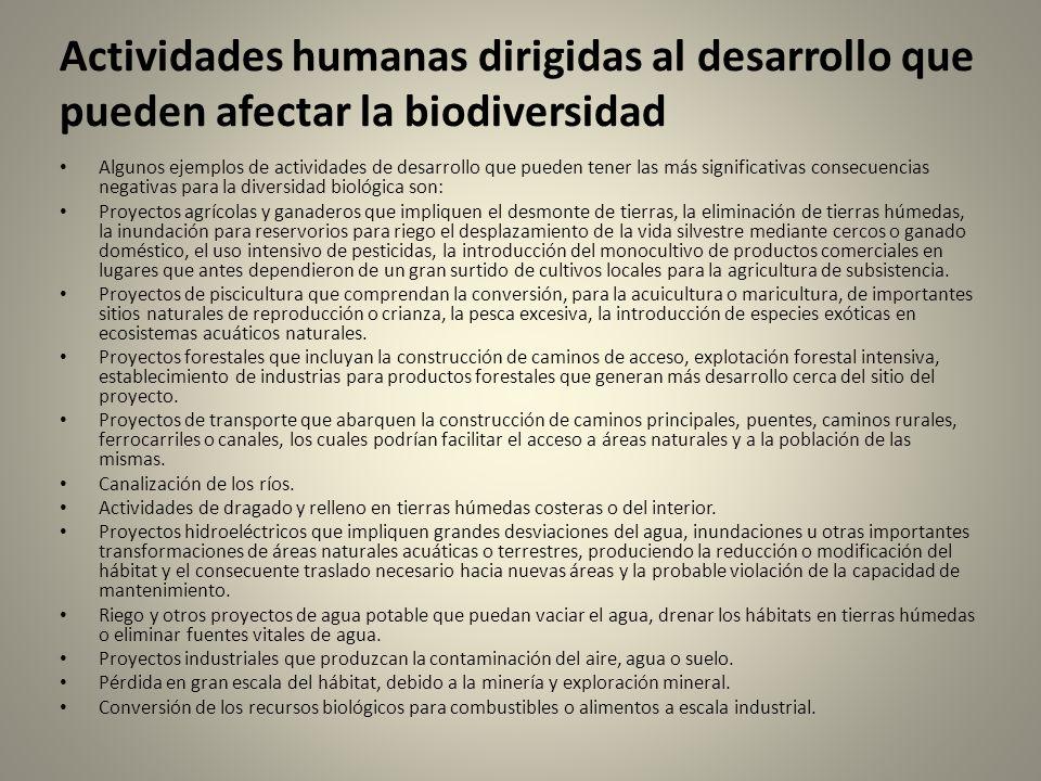 Actividades humanas dirigidas al desarrollo que pueden afectar la biodiversidad Algunos ejemplos de actividades de desarrollo que pueden tener las más significativas consecuencias negativas para la diversidad biológica son: Proyectos agrícolas y ganaderos que impliquen el desmonte de tierras, la eliminación de tierras húmedas, la inundación para reservorios para riego el desplazamiento de la vida silvestre mediante cercos o ganado doméstico, el uso intensivo de pesticidas, la introducción del monocultivo de productos comerciales en lugares que antes dependieron de un gran surtido de cultivos locales para la agricultura de subsistencia.