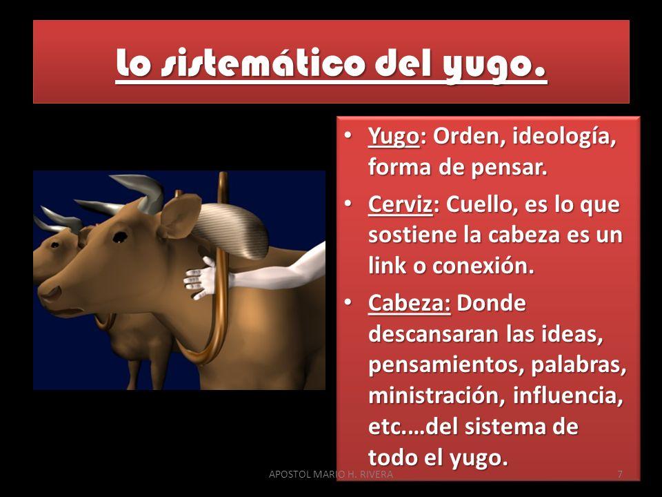 Lo sistemático del yugo. Yugo: Orden, ideología, forma de pensar. Yugo: Orden, ideología, forma de pensar. Cerviz: Cuello, es lo que sostiene la cabez