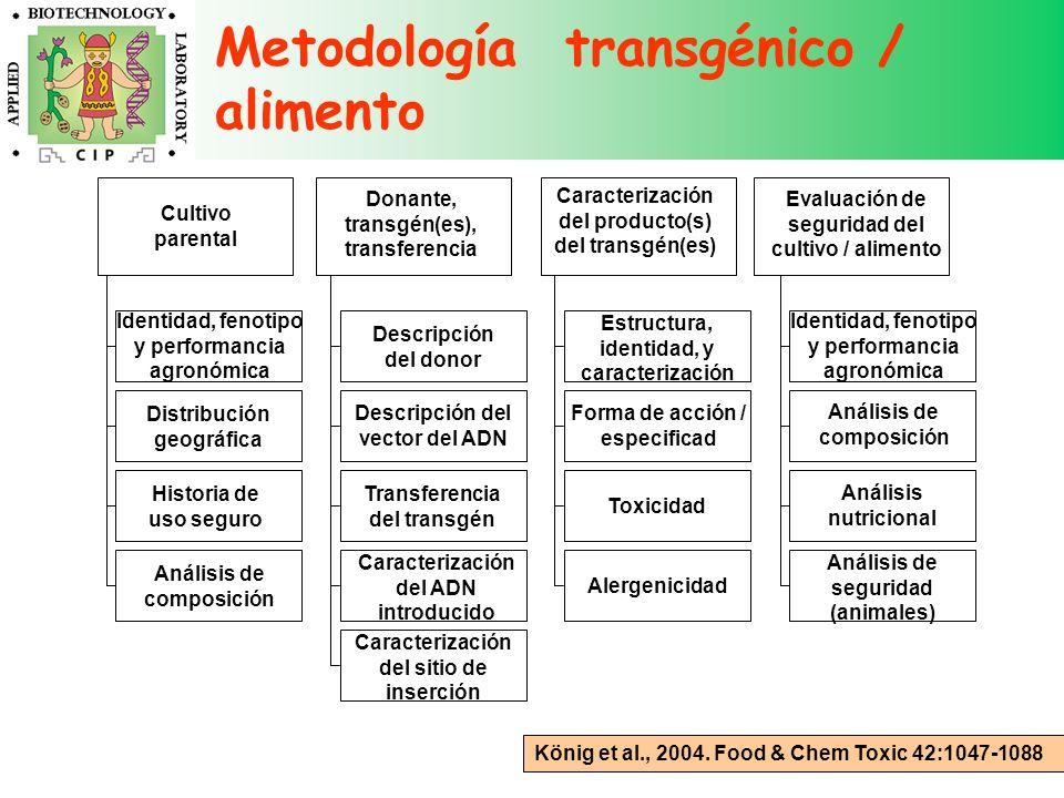 König et al., 2004. Food & Chem Toxic 42:1047-1088 Cultivo parental Identidad, fenotipo y performancia agronómica Distribución geográfica Historia de