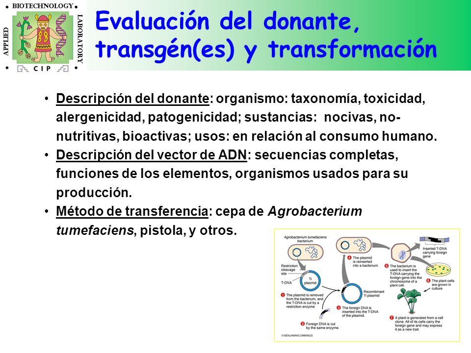 Evaluación del donante, transgén(es) y transformación Descripción del donante: organismo: taxonomía, toxicidad, alergenicidad, patogenicidad; sustanci