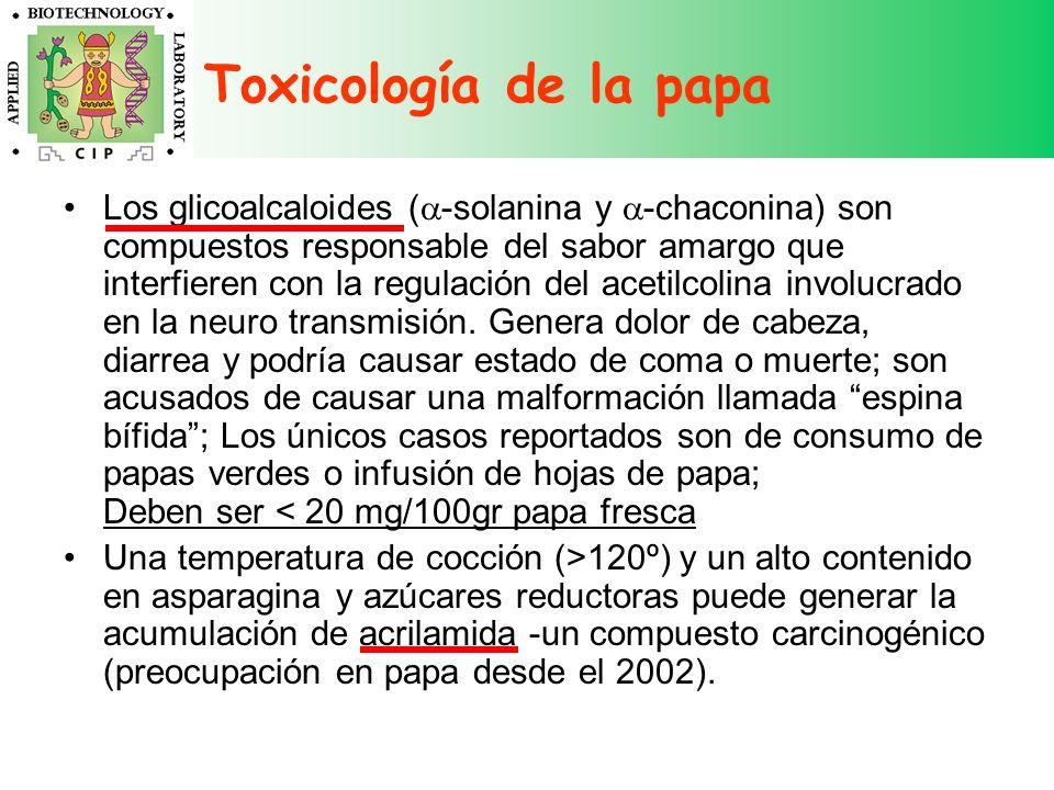 Toxicología de la papa Los glicoalcaloides ( -solanina y -chaconina) son compuestos responsable del sabor amargo que interfieren con la regulación del