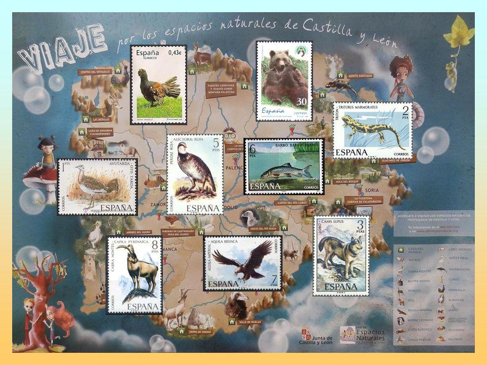 Una experiencia educativa de acercamiento a los Espacios Naturales de nuestra Comunidad Fauna de CAST ILLA Y LEÓN a través de los sellos