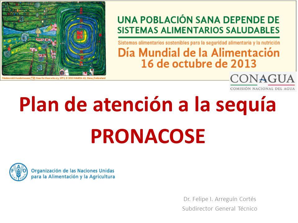 Plan de atención a la sequía PRONACOSE Dr. Felipe I. Arreguín Cortés Subdirector General Técnico