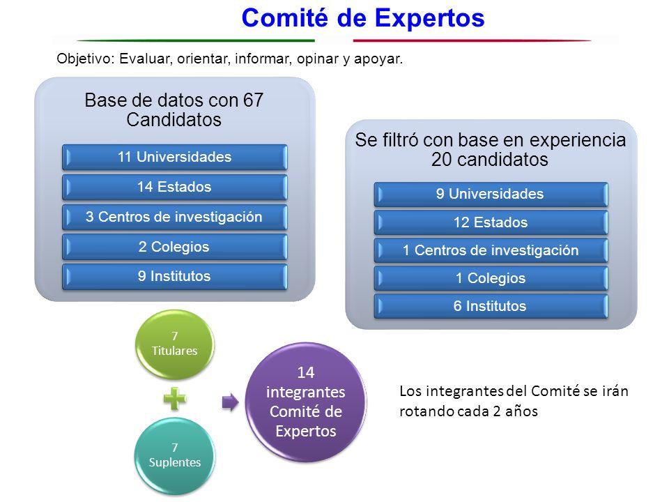 Comité de Expertos Objetivo: Evaluar, orientar, informar, opinar y apoyar. Base de datos con 67 Candidatos 11 Universidades14 Estados3 Centros de inve