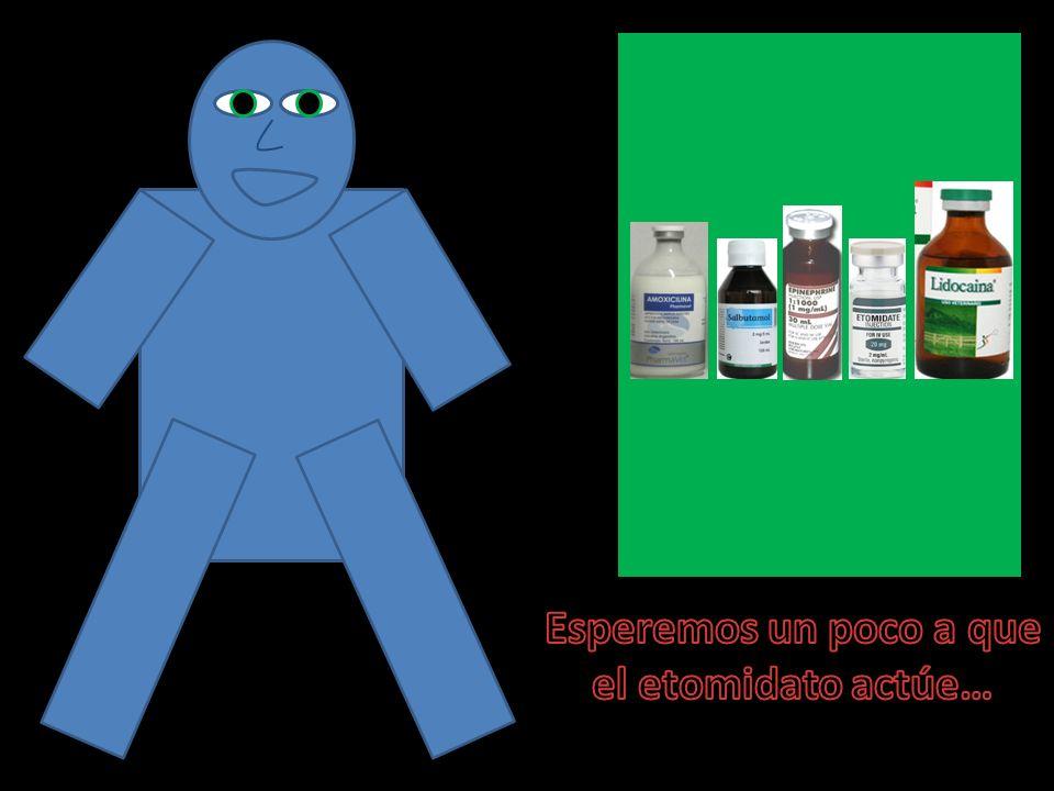 Elige el fármaco que creas conveniente del recuadro verde superior