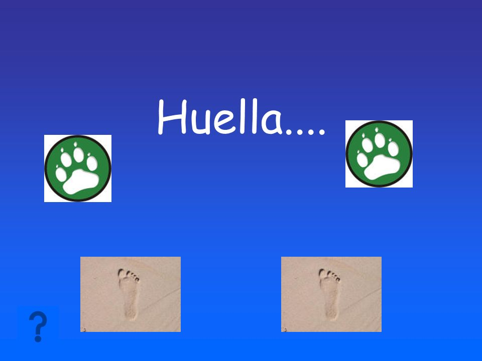 Huella....