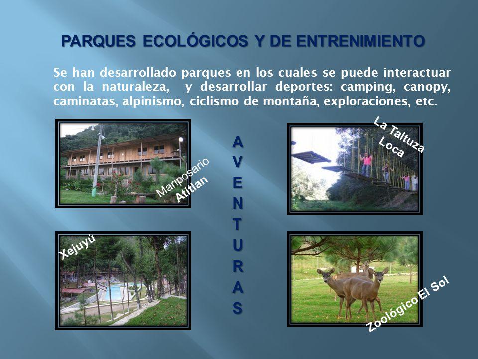 PARQUES ECOLÓGICOS Y DE ENTRENIMIENTO Se han desarrollado parques en los cuales se puede interactuar con la naturaleza, y desarrollar deportes: campin