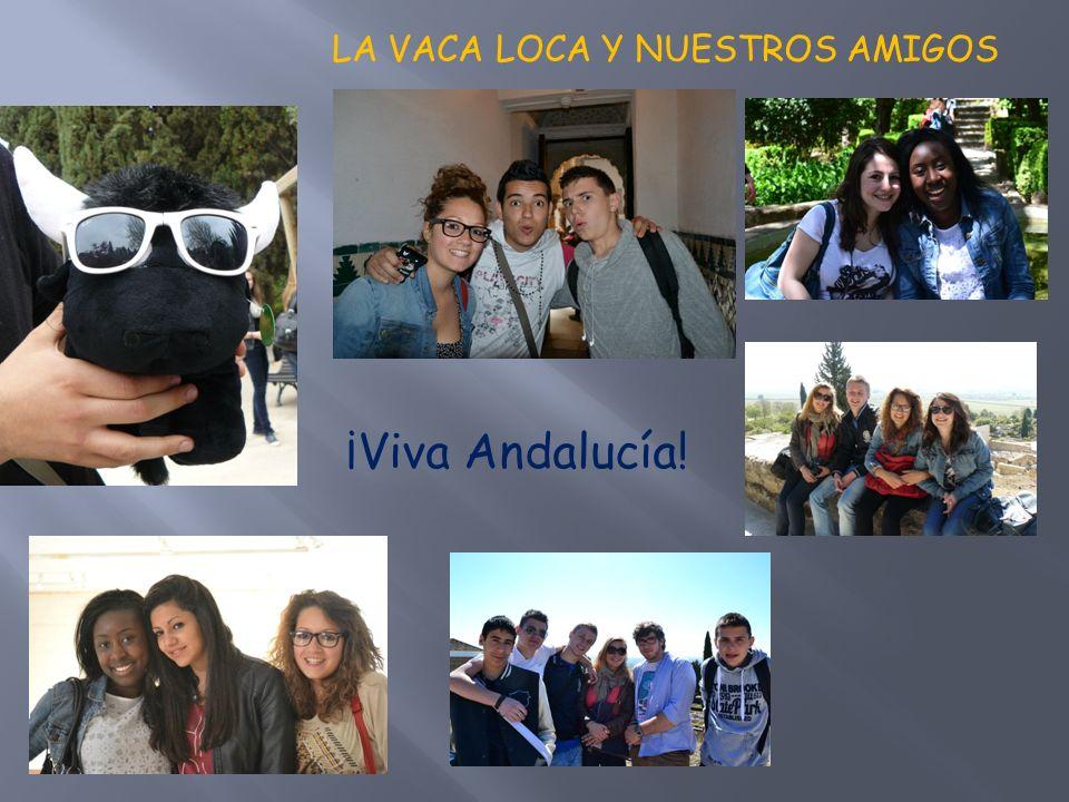 LA VACA LOCA Y NUESTROS AMIGOS ¡Viva Andalucía!