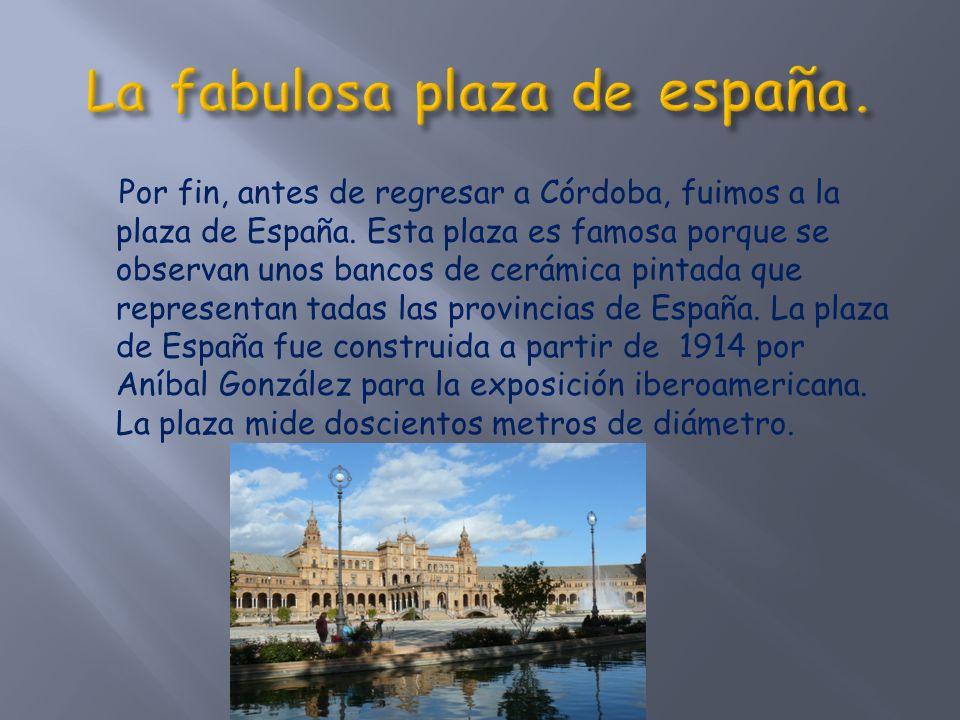 Por fin, antes de regresar a Córdoba, fuimos a la plaza de España.