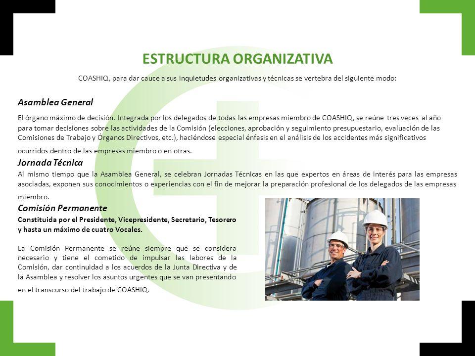 Junta Directiva Integrada por la Comisión Permanente más los coordinadores de las distintas Comisiones de Trabajo.