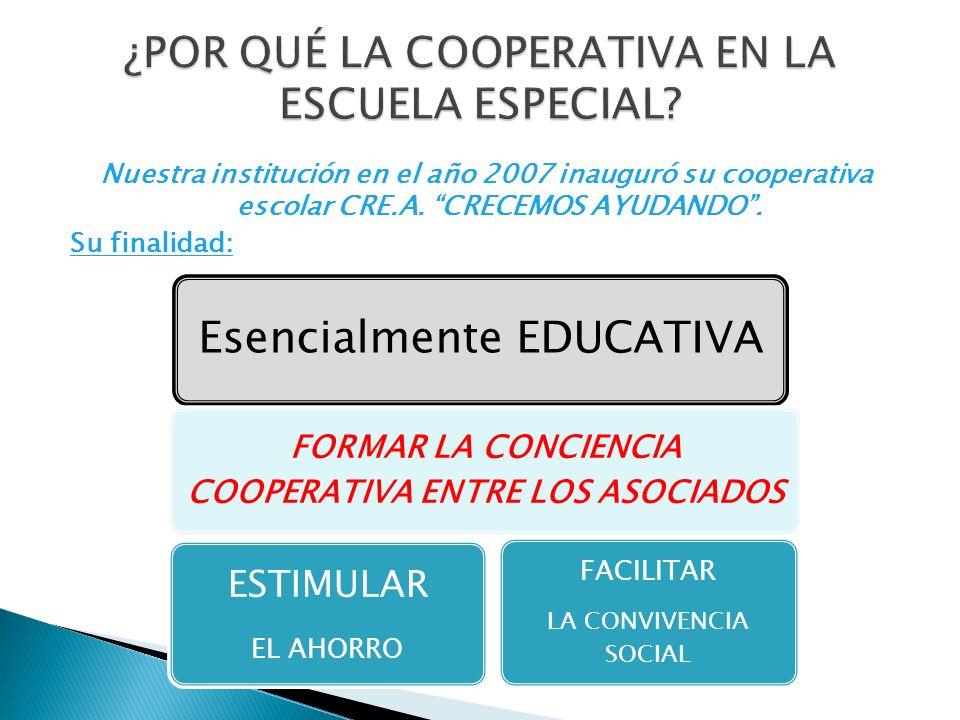 Nuestra institución en el año 2007 inauguró su cooperativa escolar CRE.A. CRECEMOS AYUDANDO. Su finalidad: Esencialmente EDUCATIVA FORMAR LA CONCIENCI