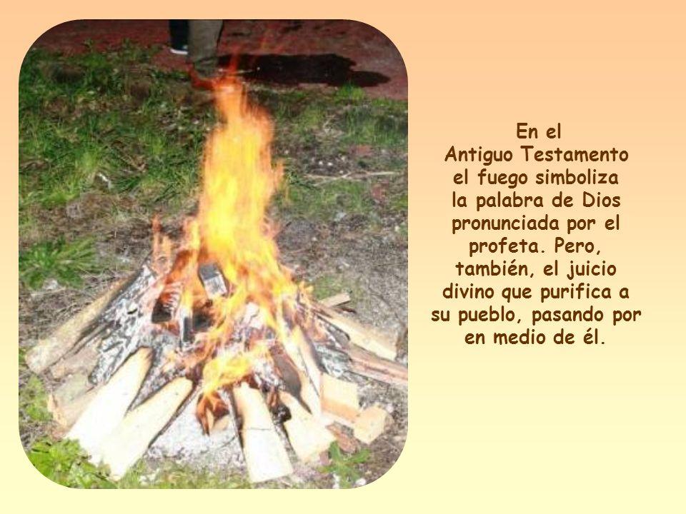 «He venido a traer fuego a la tierra, y ¡cuánto desearía que ya estuviera ardiendo!» (Lc 12,49).