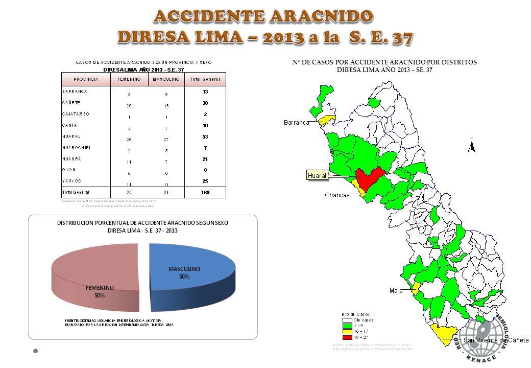 N° DE CASOS POR ACCIDENTE ARACNIDO POR DISTRITOS DIRESA LIMA AÑO 2013 – SE. 37
