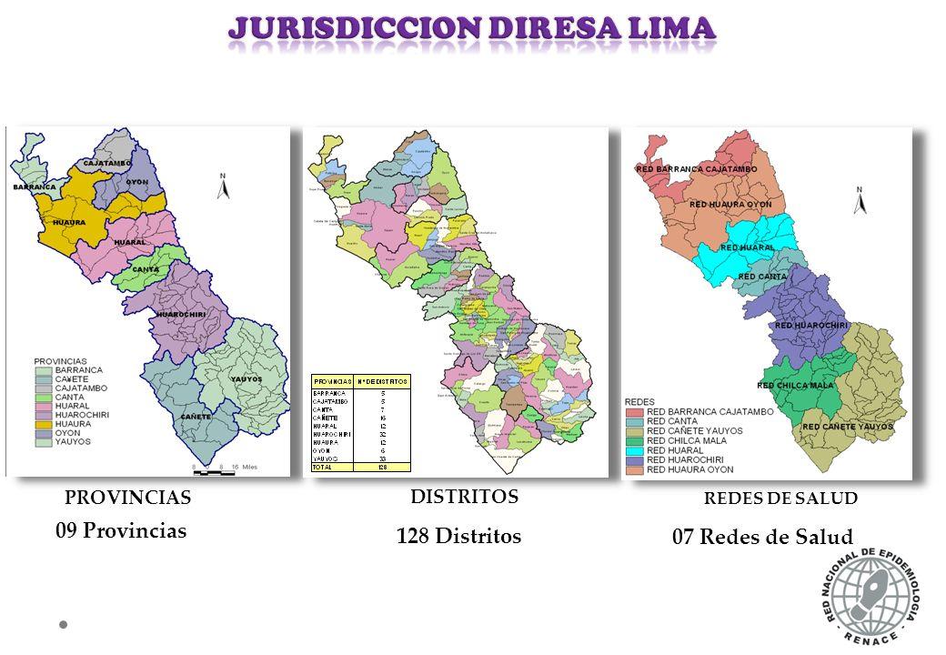 N° DE CASOS CONFIRMADOS DE INTOXICACION POR PLAGUICIDAS POR DISTRITOS DIRESA LIMA AÑO 2013 – SE. 37