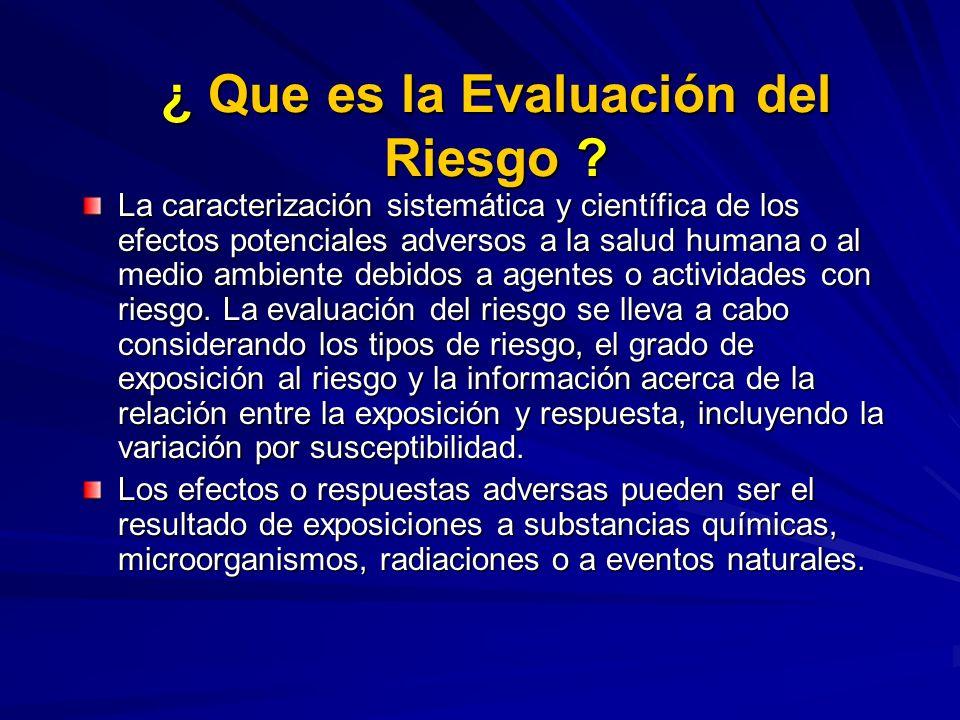¿ Que es la Evaluación del Riesgo ? La caracterización sistemática y científica de los efectos potenciales adversos a la salud humana o al medio ambie