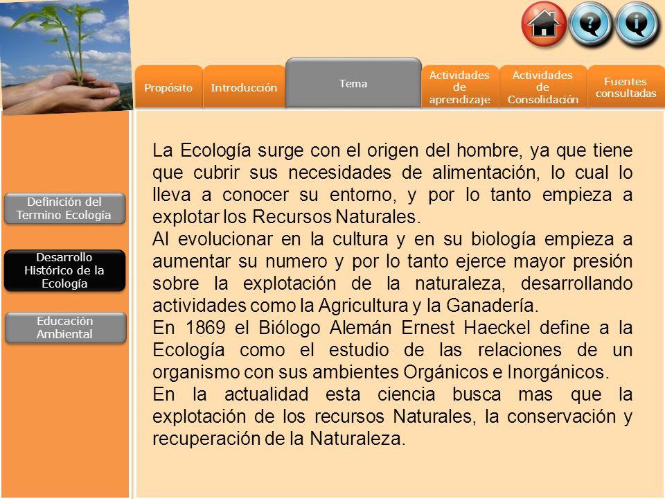 Propósito Introducción Tema Actividades de Consolidación Actividades de Consolidación Fuentes consultadas Fuentes consultadas Actividades de aprendiza