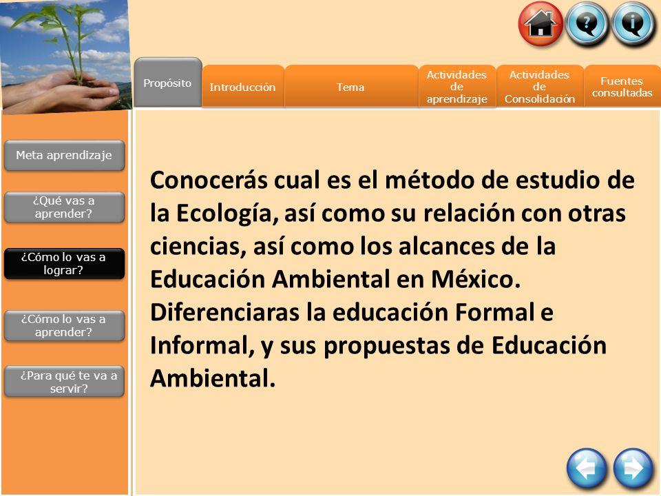 Propósito Actividades de Consolidación Actividades de Consolidación Fuentes consultadas Fuentes consultadas Introducción Tema Actividades de aprendiza